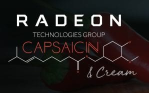 Segui in diretta il Livestream AMD Capsaicin & Cream
