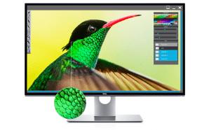 In vendita il Dell UP3218K UltraSharp – $5000 per questo…
