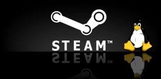 Steam potrebbe ricevere strumenti per far girare i giochi su Linux