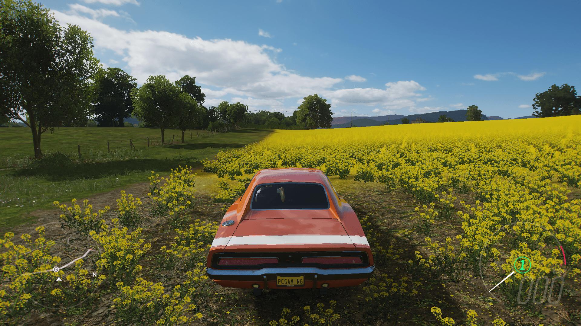 basso1 - Forza Horizon 4 - Recensione come gira su PC