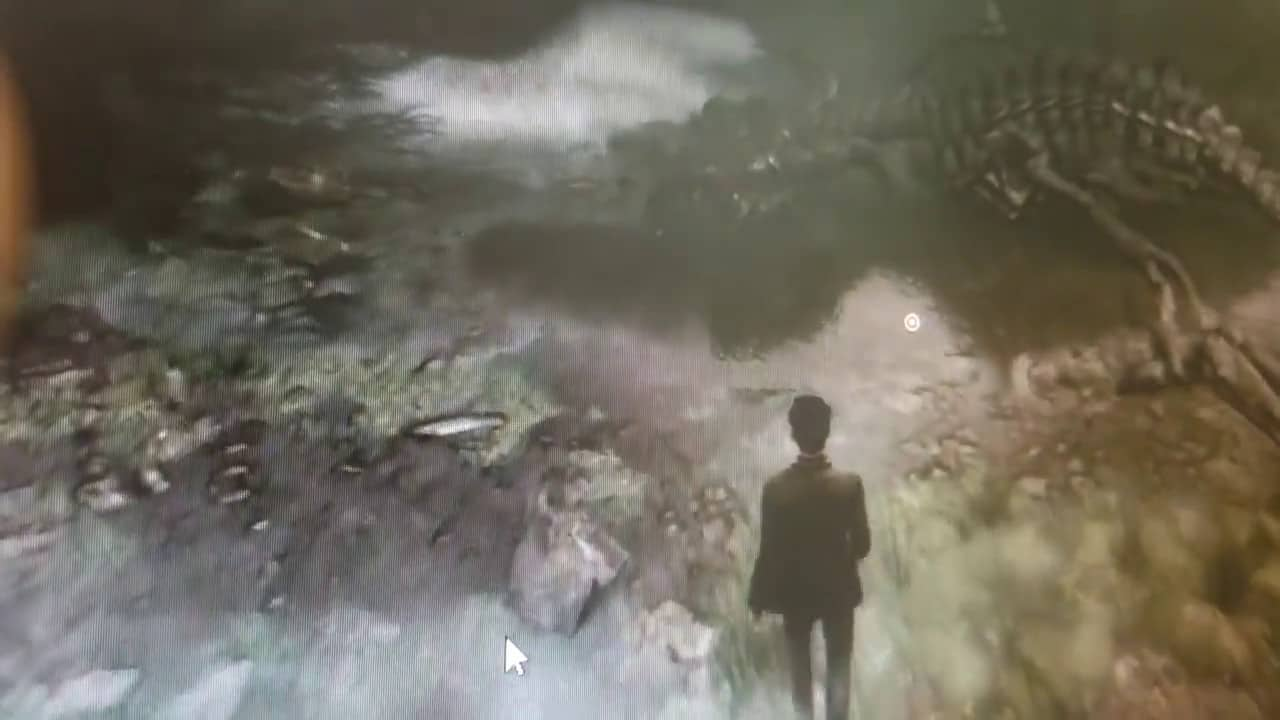 harry potter videogame leak - Spunta fuori il video di un presunto RPG open world di Harry Potter